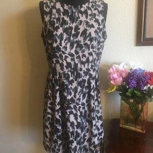 NWOT Ann Taylor Loft Dress